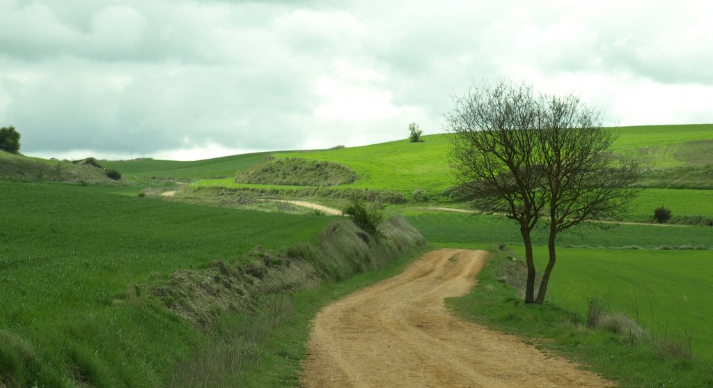 Best places to hike in Europe, Camino de Santiago Spain