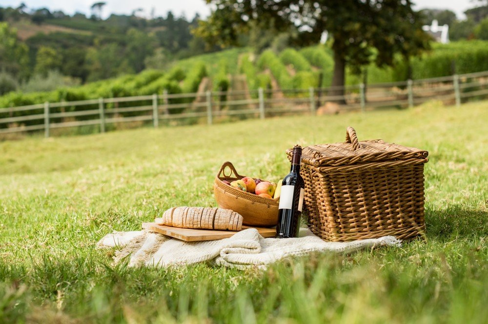 picnic in hyde park london - 15 Romantic Things To Do In London For Couples Madly In Love!