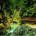 The complete guide to Vintgar Gorge, Slovenia