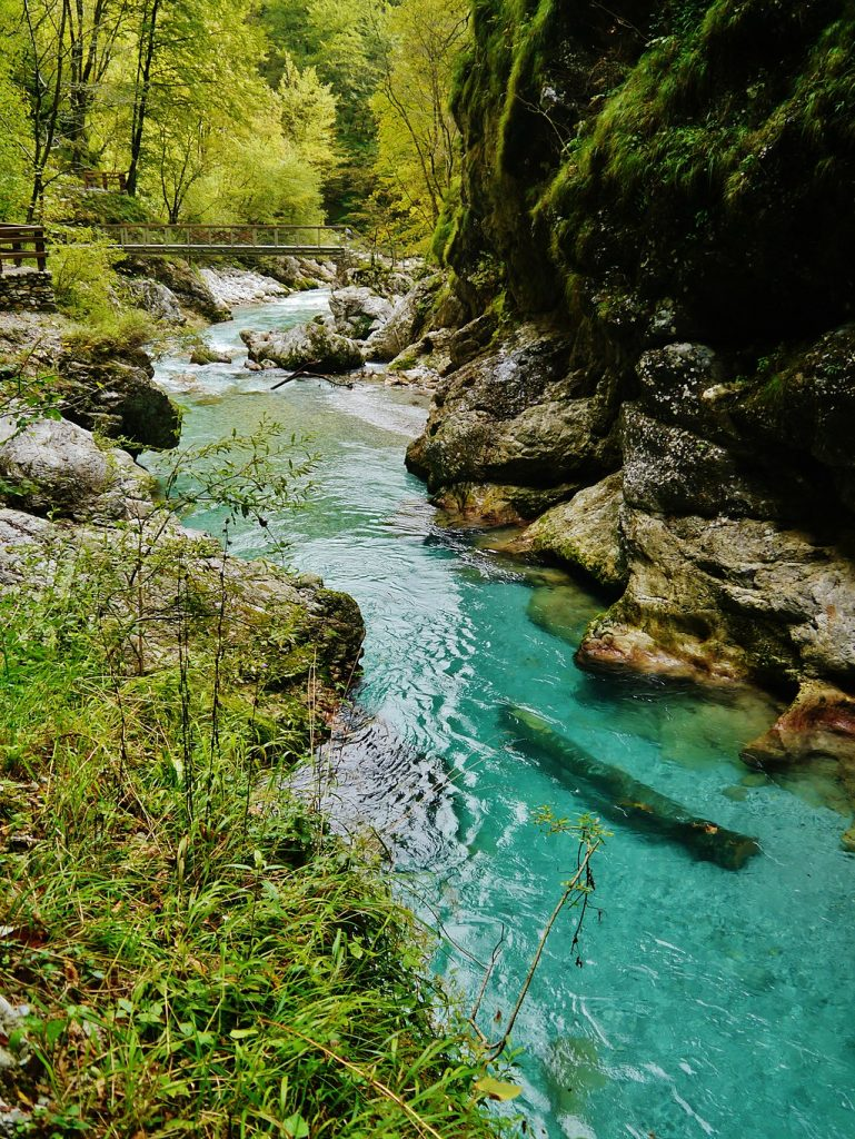 tolmin river 769x1024 - Tolmin Gorge in Slovenia: a wonderful Place To Hike and explore The Nature